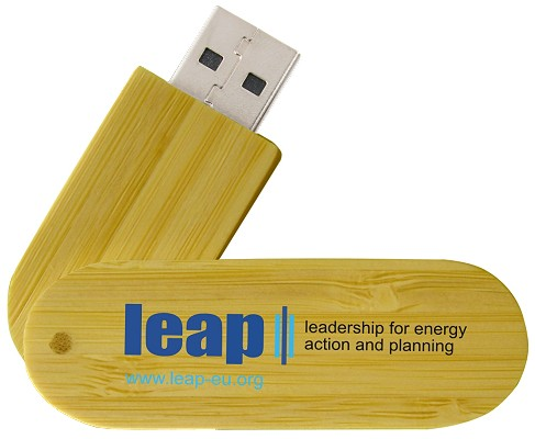 Eco Swing Wood USB Drive